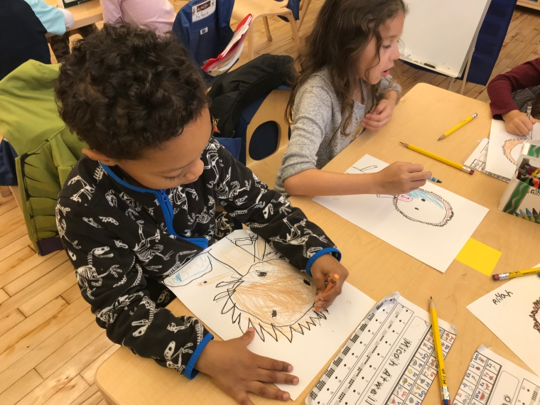 students drawing animals