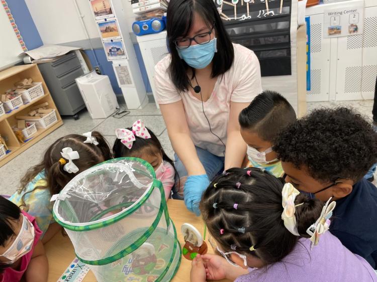 caterpillar student experiment