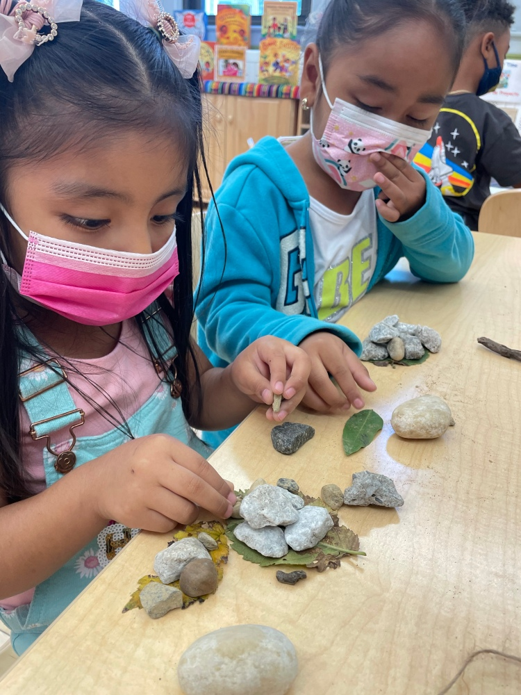 students working with nature